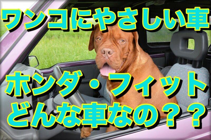 愛する犬と一緒に暮らすための車 おすすめホンダ・フィット