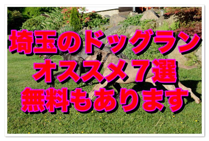 ドッグラン【埼玉】おすすめ7選(無料あり)