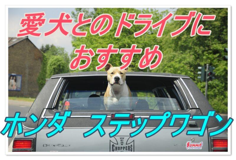 犬とのドライブにおすすめな車|ホンダ・ステップワゴン|