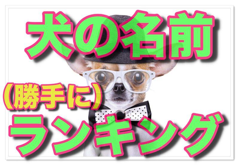 テーマ別「犬の名前」独断で勝手におすすめランキング!
