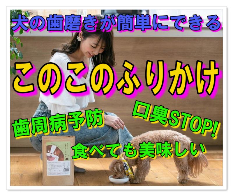 犬の歯磨きが簡単!このこのふりかけは食べるだけでお口元気