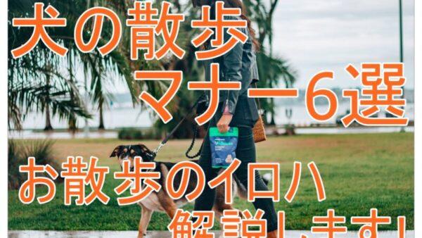 犬の散歩マナー6選!マナーの悪い行動やポイントなど|散歩のイロハを解説!